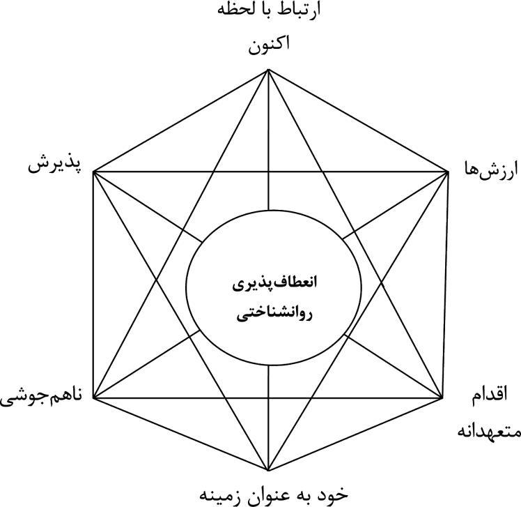 فرایند اصلی رویکردACT